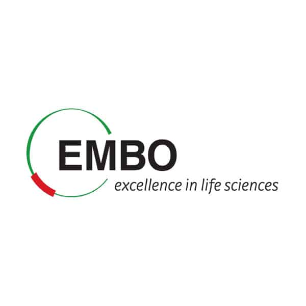 Andela selected as EMBO Young Investigator 2020